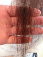 縮毛矯正失敗ビビリ毛状態